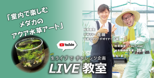 ライブコマース20210726LIVE【バナー】.png