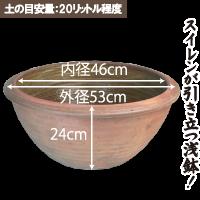 大型浅鉢(EW004大)