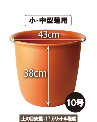 プラ鉢・茶・10号