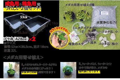 ミニ・メダカ繁殖ビオトープセット内容