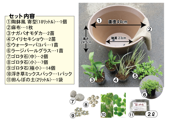 田んぼの土で作る小さな本格ビオトープキット セット内容