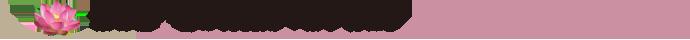 京都産 蓮の実使用「はす食品」