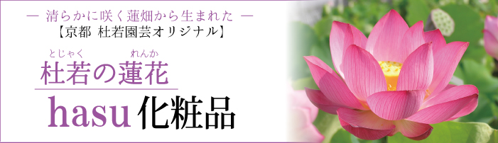 hasu化粧水