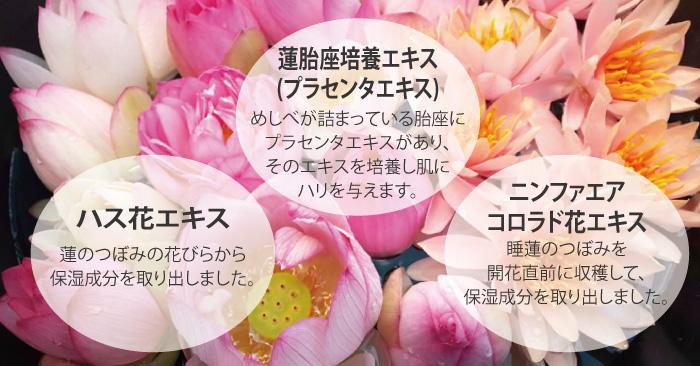1年にわずかな期間しか咲かない蓮の花のつぼみからわずかに抽出される希少なハスプラセンタエキス
