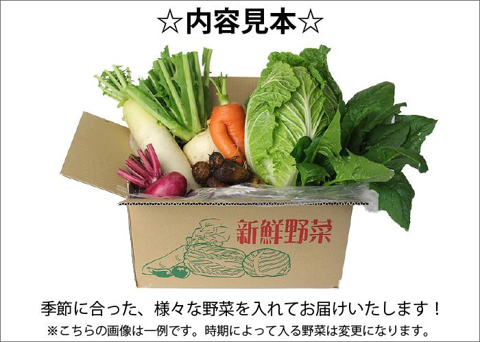杜若園芸 とじゃくえんげい 京都の野菜 冬採れ野菜販売