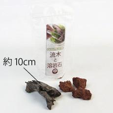 苔テラリウムづくりの流木と溶岩石のセット(中)