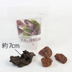 苔テラリウムづくりの流木と溶岩石のセット(小)