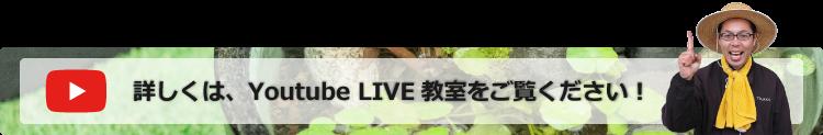 Youtube LIVEボタン