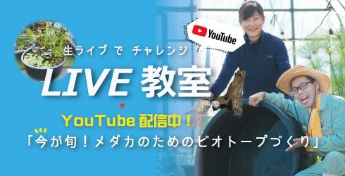 live0612LPbanner.jpg