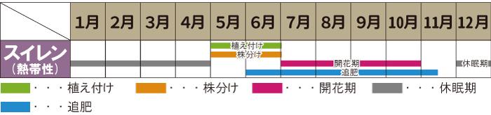 熱帯スイレ  ンカレンダー
