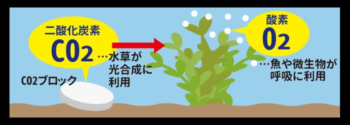 CO2ブロック 杜若園芸 水草水槽 水草 アクアリウム