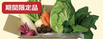 京都産 旬のお野菜