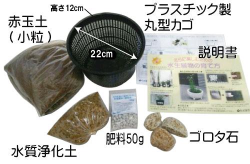 水生植物植え替えセット(丸型カゴ・硬質赤玉土入り)