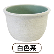 杜若園芸とじゃくえんげい セットの鉢白色