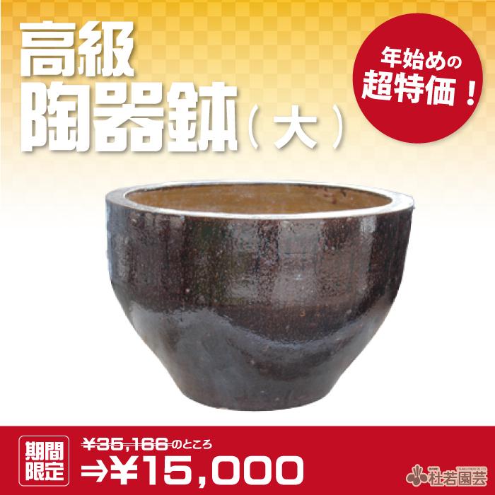 高級陶器鉢 大
