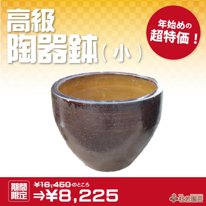 高級陶器鉢 小