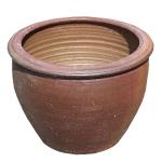 メダカビオトープにおすすめ!水鉢