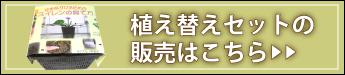 杜若園芸 とじゃくえんげい スイレンの植え替えセットの販売はこちら