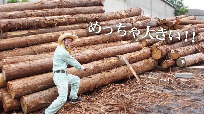 京の高級木枠 京都産・国産杉を使用した職人の手作り品 7