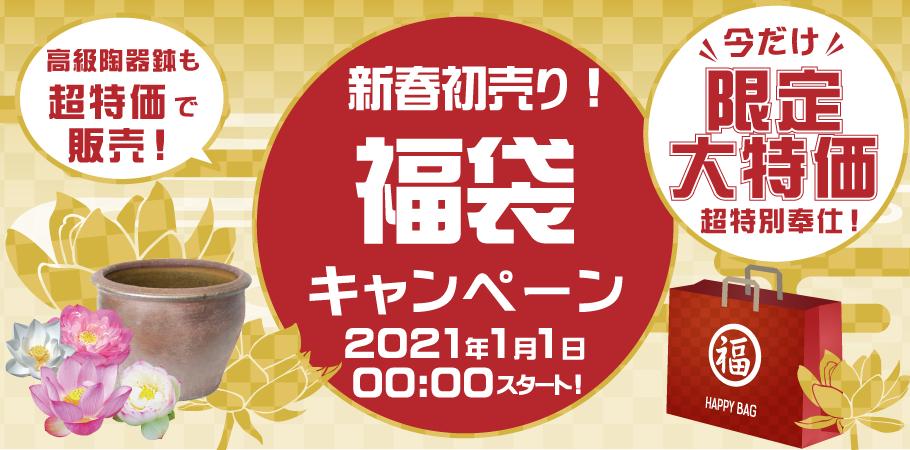 新春初売り!福袋キャンペーン