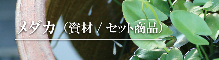 メダカ(資材/セット商品)
