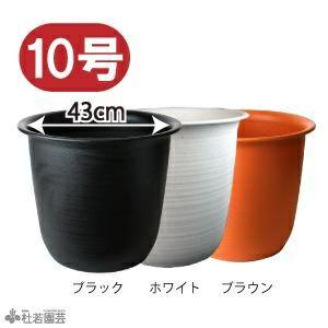 ハス(蓮)用・大型プラ鉢・10号