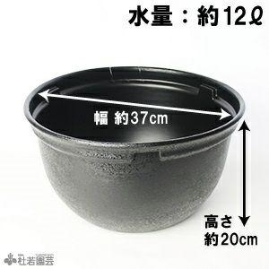 メダカのための黒プラ鉢